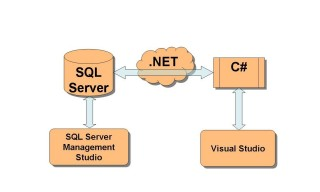 Asp.net, MS SQL, Windows Forms, Html, CSS